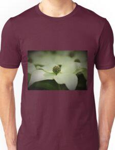 Cornus Kousa Dogwood T-Shirt