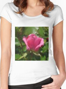 Pink Rose Bud Women's Fitted Scoop T-Shirt