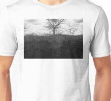 Winter Cypress Trees Unisex T-Shirt