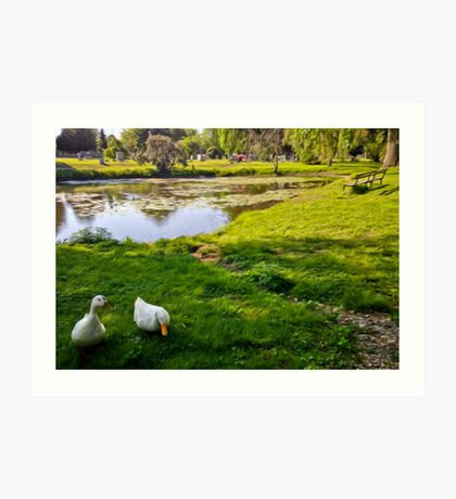 Duck couple near a pond, near a cemetery, in New England Art Print