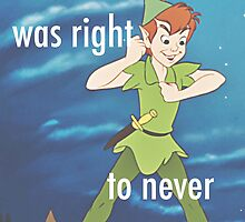 Peter Pan was Right by abigailahn