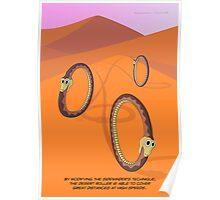 The Desert Roller Snake Poster