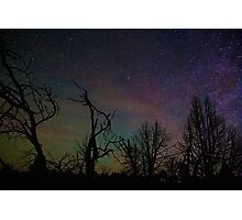 Aurora Starscape Cosmos Over Burnt Forest  Photographic Print