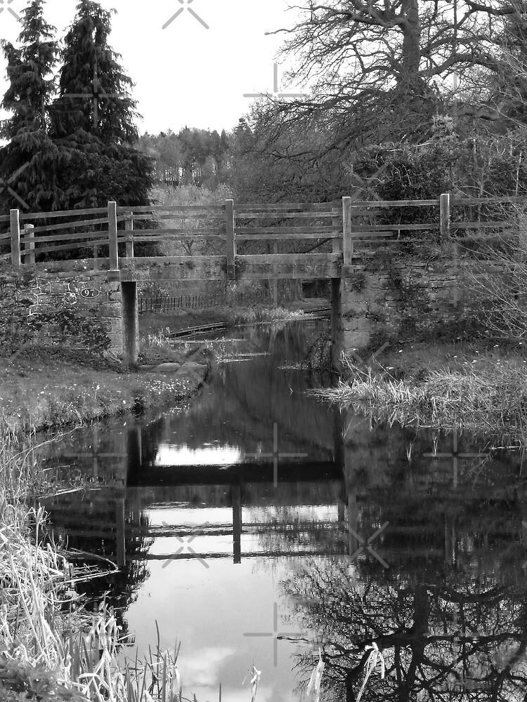 Pentreheylin Hall Bridge by Yampimon