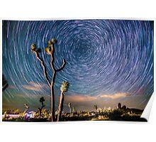 Polaris Star Trails Spin Around Yucca in Joshua Tree Poster
