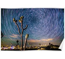 Polaris Star Trails Spin Around Yucca in Joshua Tree Poster