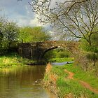 Narrowboat Calendar 2 by SimplyScene
