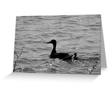 WITH SPRING DUCKLING Greeting Card