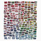 World Flags by Nathan Dirienzo