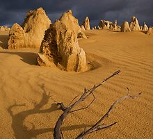 The Pinnacles by Lesley Williamson