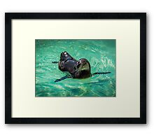 Penguin Heaven Framed Print