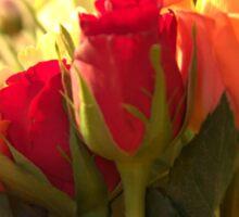 Bouquets, As Is Sticker