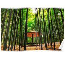 Among the bamboo forest Poster