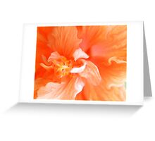 Orange Hibiscus Art Greeting Card