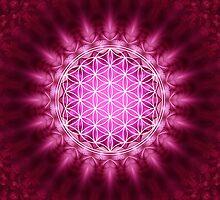 FLOWER OF LIFE - SACRED GEOMETRY - HARMONY & BALANCE by nitty-gritty