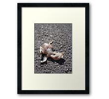 Raven Body (Birth)  Framed Print