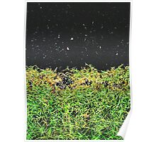 Dark Black Road Gradient With Green Grass Poster