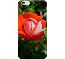 Orange Impressionist Rose iPhone Case/Skin