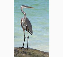 Heron at Stump Pass (Florida, USA) Unisex T-Shirt