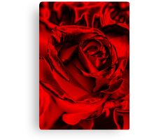 Red for the Holidays Canvas Print