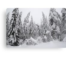 Winter forest, heavy snow Canvas Print