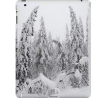 Winter forest, heavy snow iPad Case/Skin