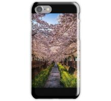 Cherry Blossom Tunnel iPhone Case/Skin