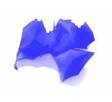 Blue Paper Butterfly Pillows by Da Eun You