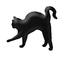Arched back cat by AnchorArt