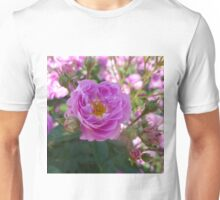 Northern Accent Shrub Rose Unisex T-Shirt