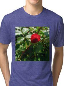 Mystic Fairy Rose Bud Tri-blend T-Shirt