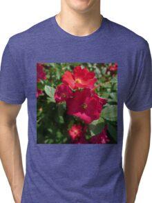 Colorful Shrub Roses Tri-blend T-Shirt
