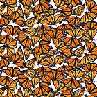 Monarch flock of butterlies by Veera Pfaffli