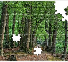 Woods Jigsaw by Aheroy
