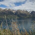 Lake Wakatipu by davidandmandy