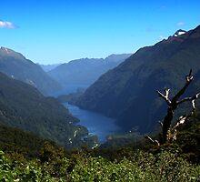Wilmot Pass by davidandmandy