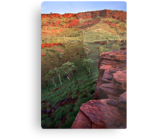 The Painted Pilbara Metal Print
