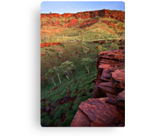 The Painted Pilbara Canvas Print