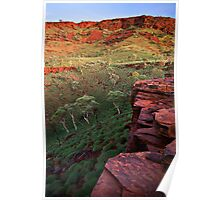 The Painted Pilbara Poster