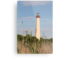 Cape May Lighthouse through the Reeds Metal Print