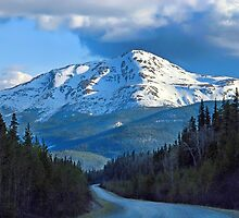 Along the Cassiar Highway, B.C. by Dyle Warren