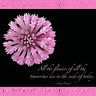 The Flowers Of Tomorrow - Pink Clover With Quote by MotherNature