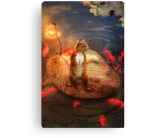 Columbus the Squirrel Canvas Print