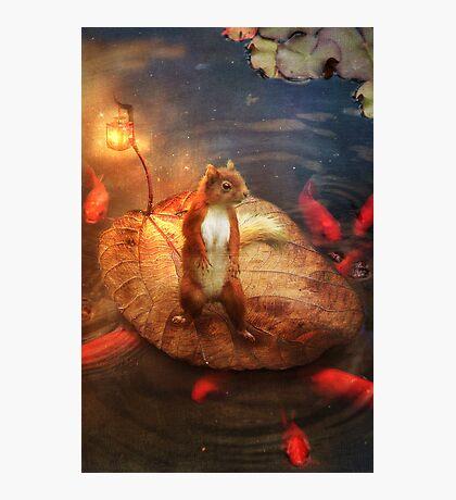 Columbus the Squirrel Photographic Print