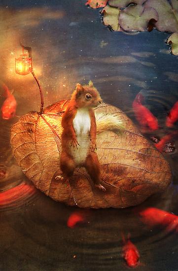 Columbus the Squirrel by Aimee Stewart