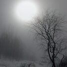 La bella luna by Gisele Bedard