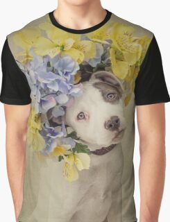 Shelter Pets Project - Rascal Graphic T-Shirt