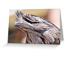 Tawny Frogmouth (Podargus strigoides) Greeting Card