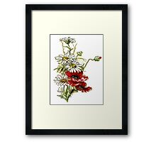 Vintage Floral Daisies and Poppies Framed Print