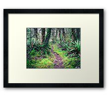 Idyllic footpath in the forest  Framed Print